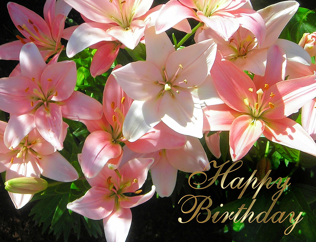 Happy birthday Pyl Dyxum